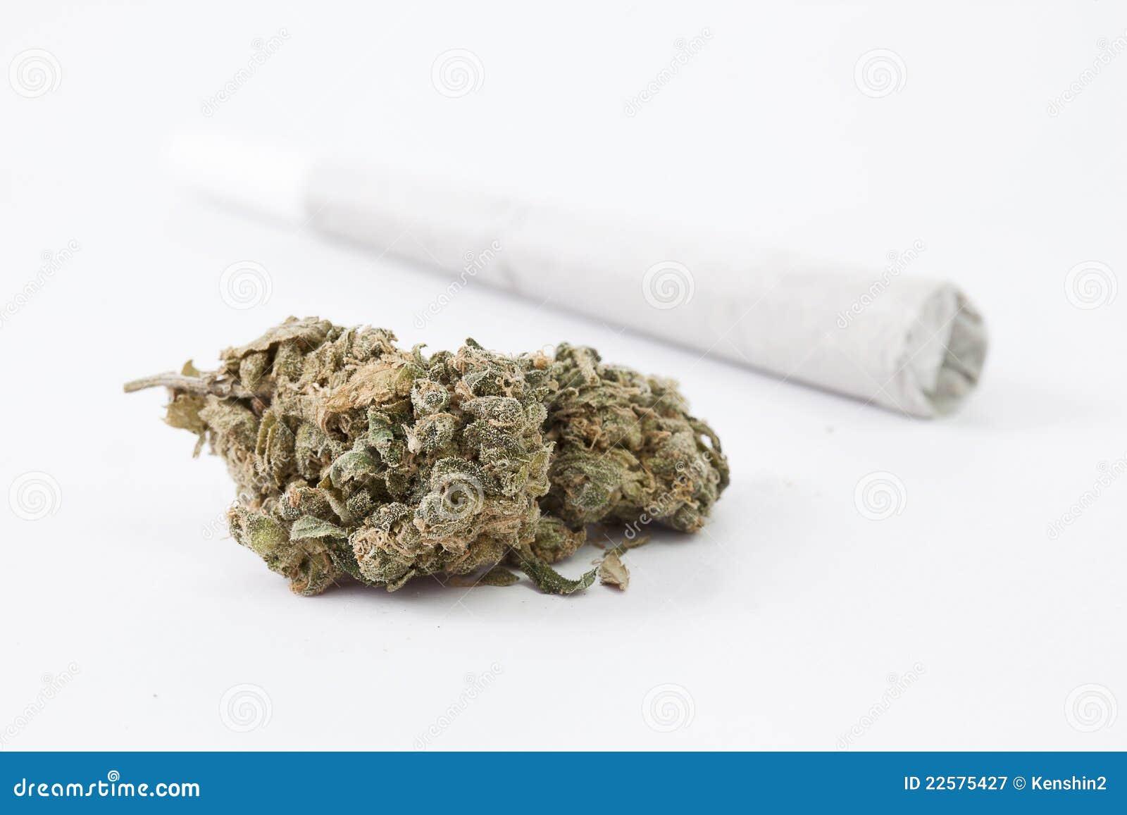 Cannabis et joint