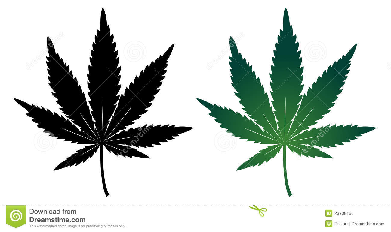 cannabis leaf stock vector illustration of abuse habit