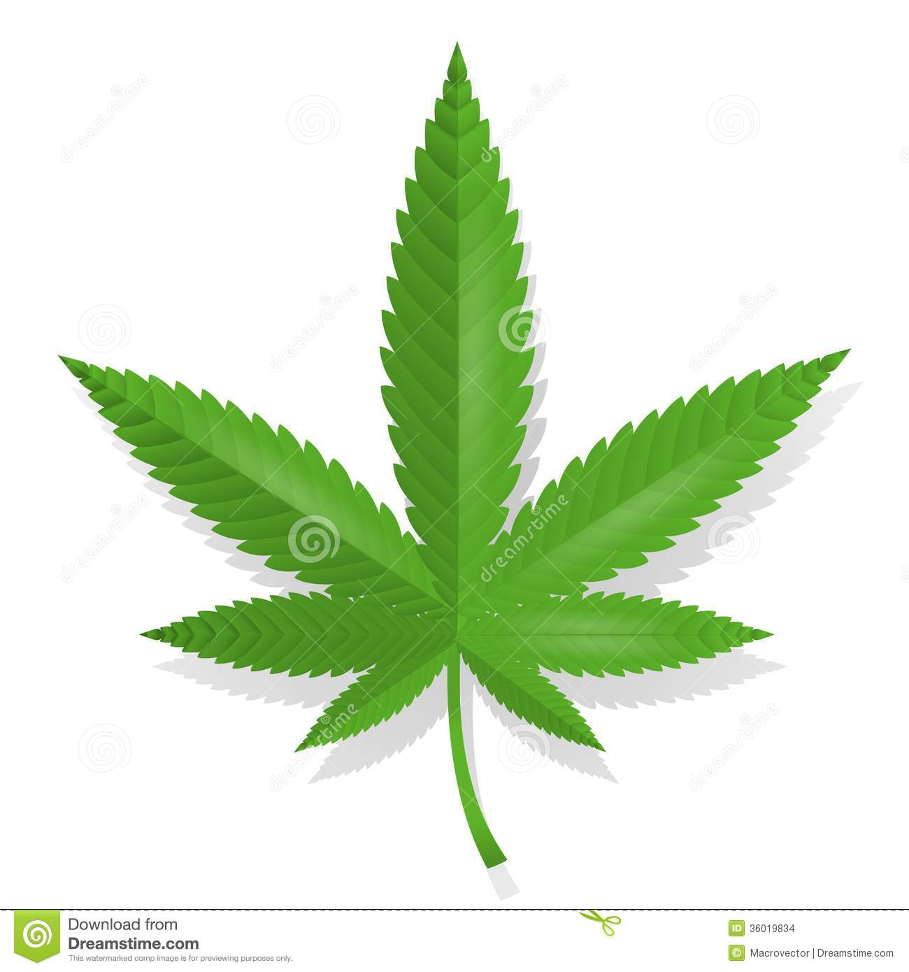 Cannabis Leaf Icon Stock Images - Image: 36019834
