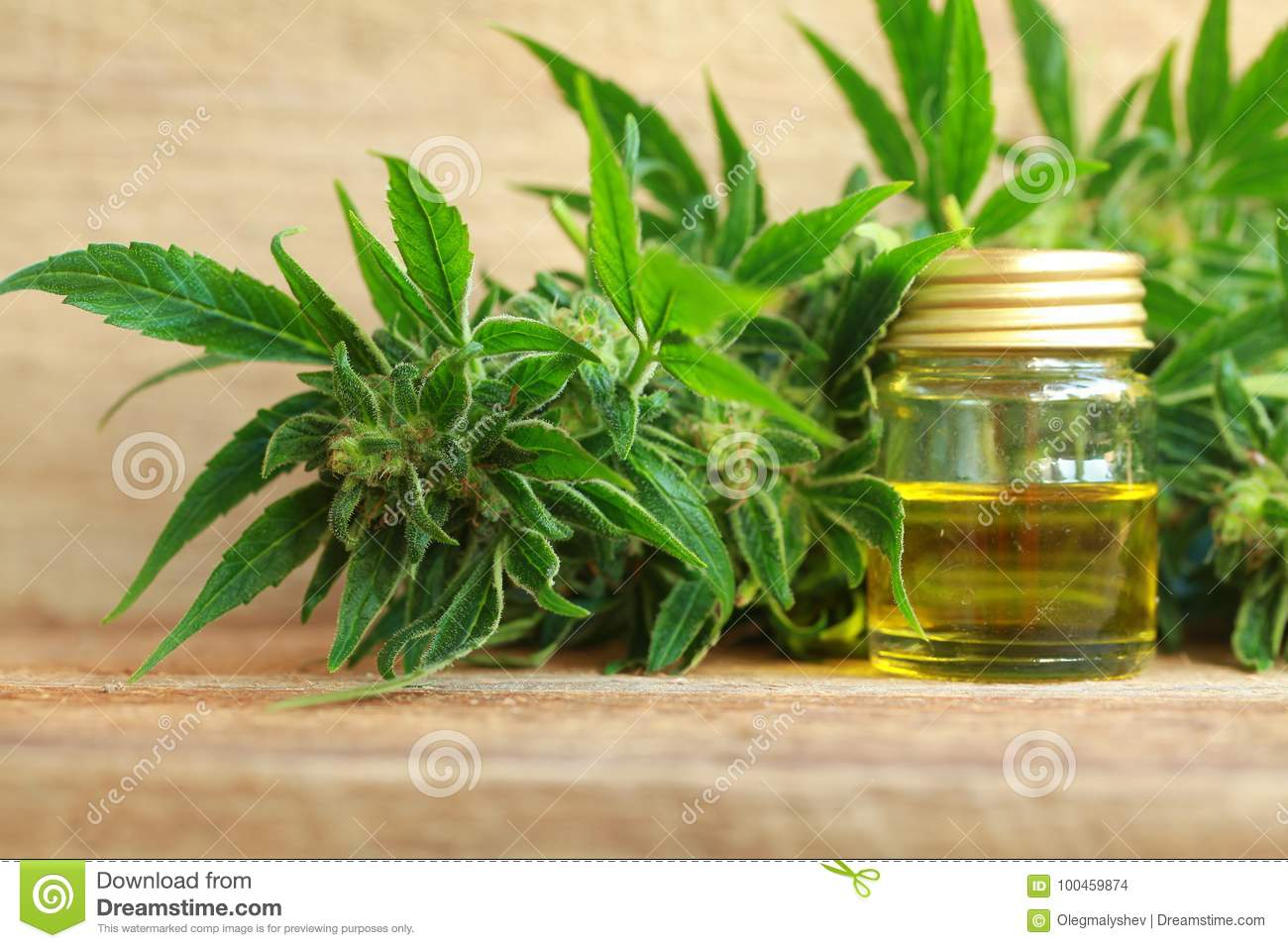 Medical Cannabis Oil Extract And Hemp Plant Stock Photo