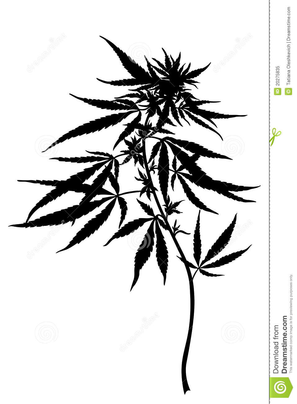Weed Leaf Sketch at PaintingValley.com | Explore ... |Weed Plant Drawings