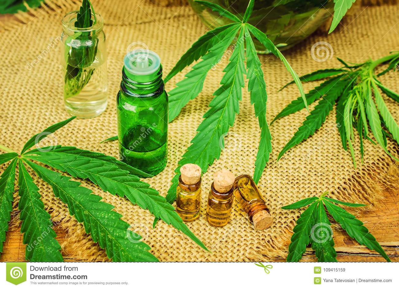 Cannabiskruid en bladeren voor behandelingsbouillon, tint, uittreksel, olie