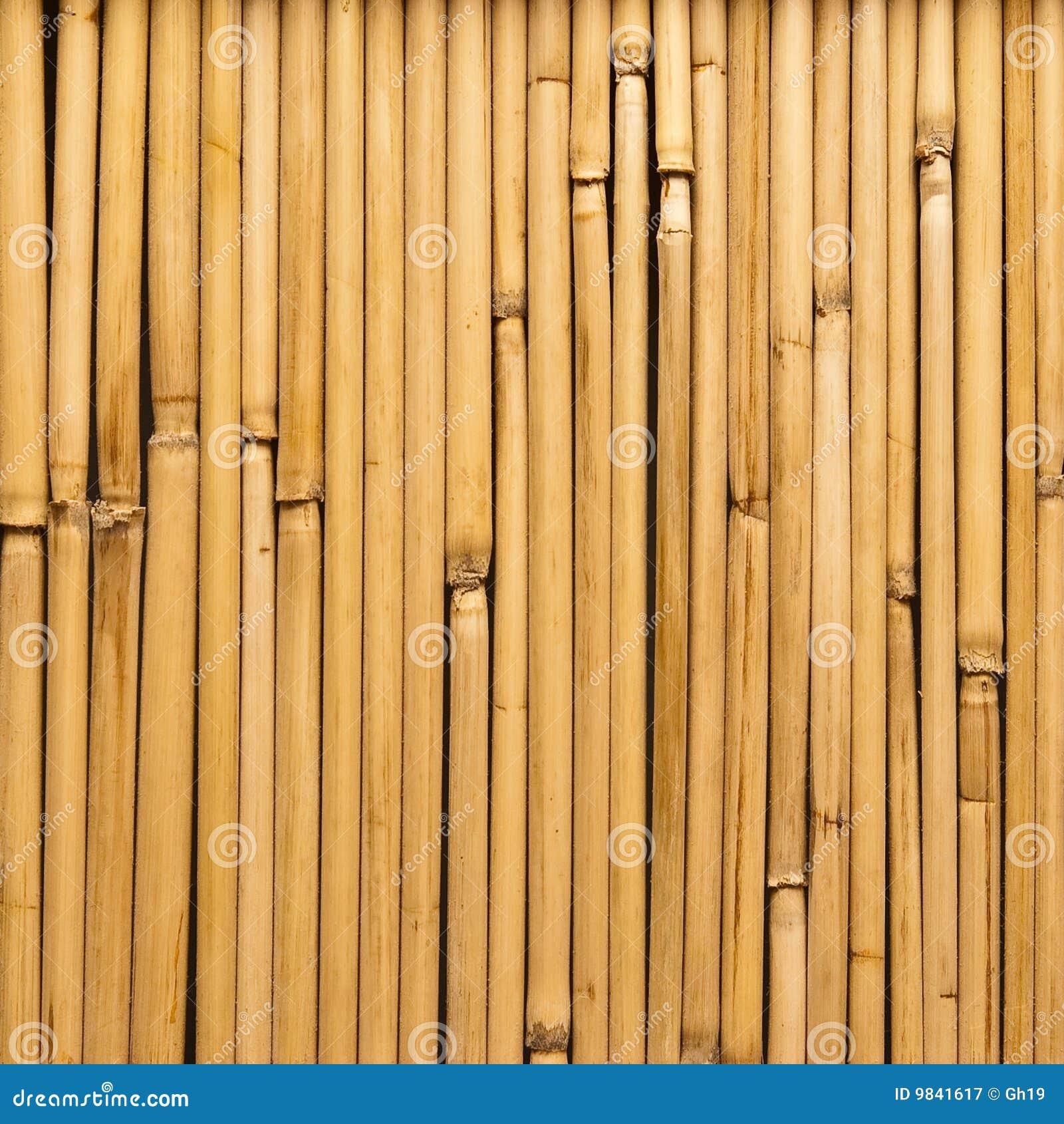 Canne di bamb immagine stock immagine di liscio for Canne di bambu per arredamento