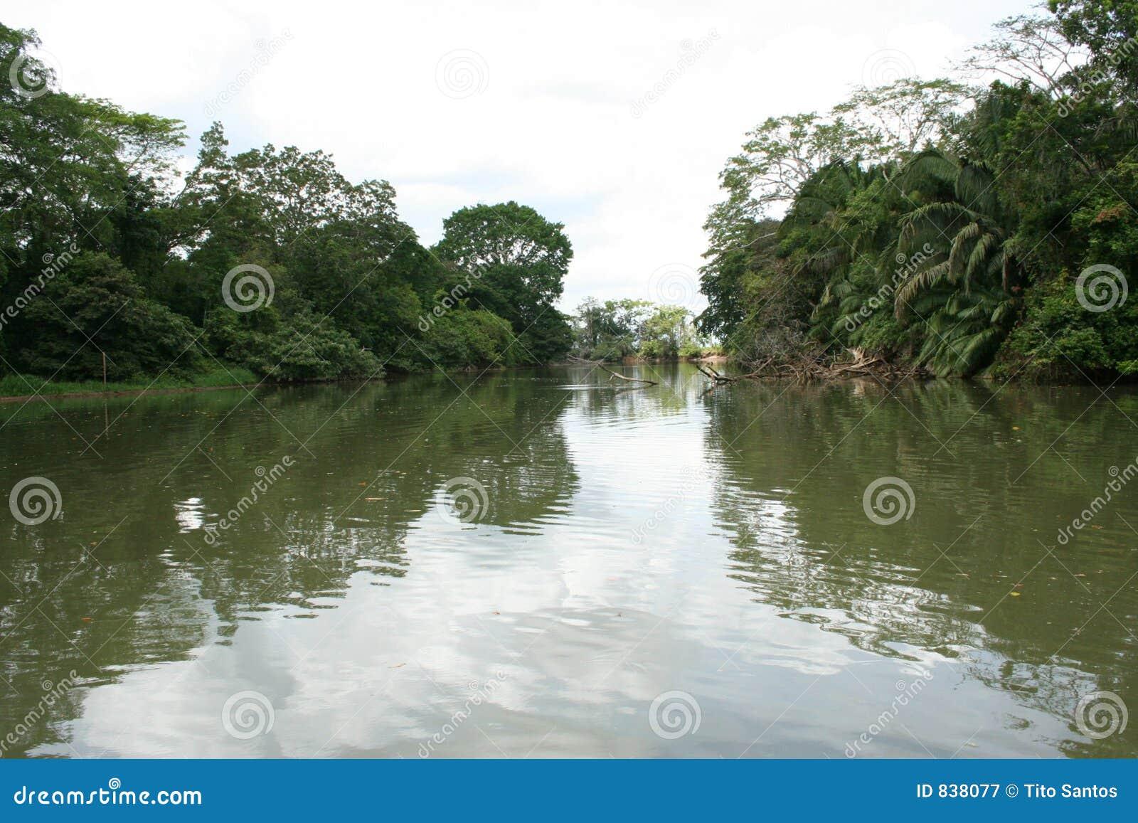 Cano Negro 04