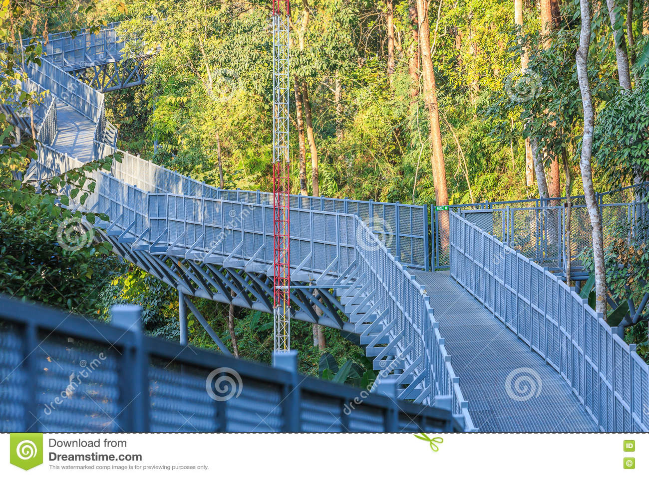 Canopy Walks At Queen Sirikit Botanic Garden, Chiang Mai, Thaila