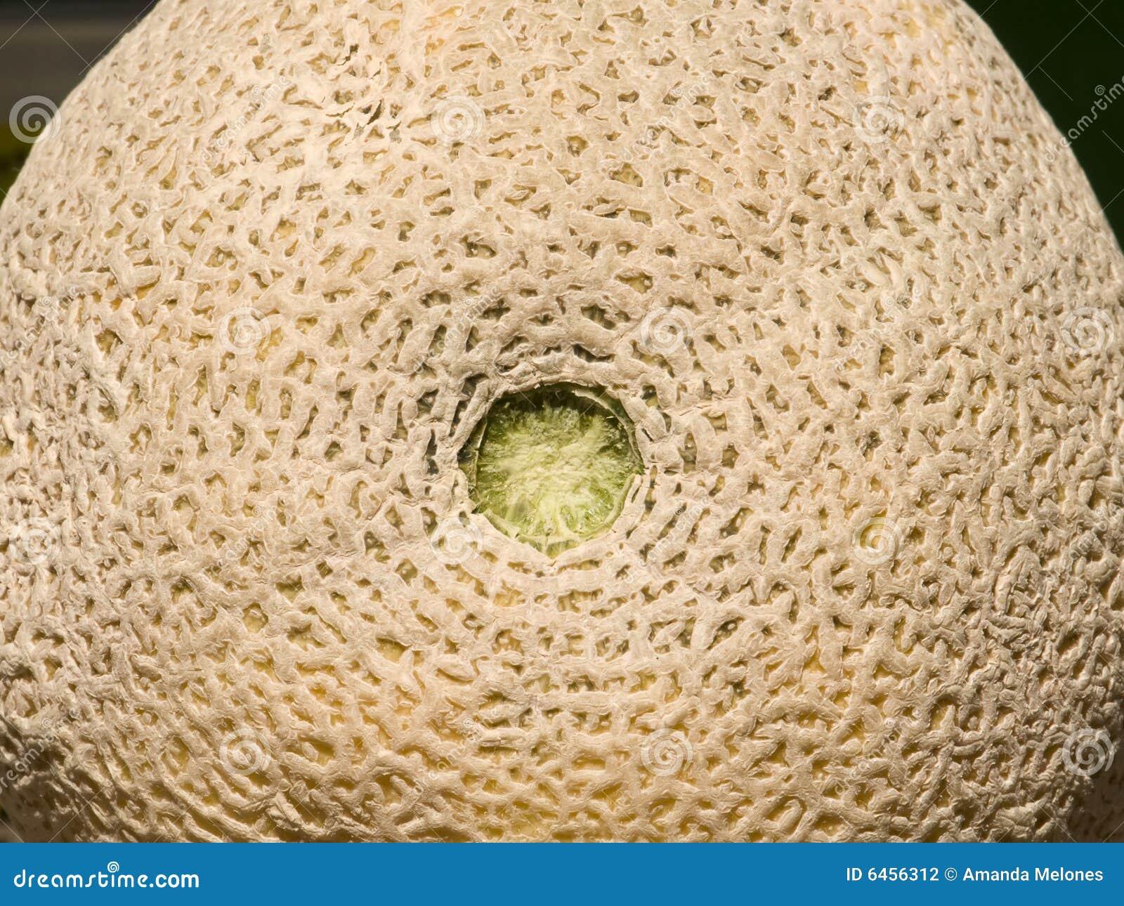Cantaloupe1