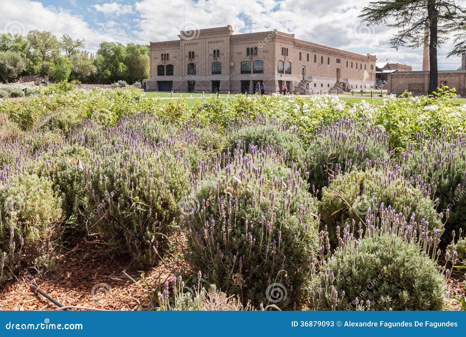 Download Cantina In Mendoza Argentina Immagine Stock - Immagine di cantina, latino: 36879093