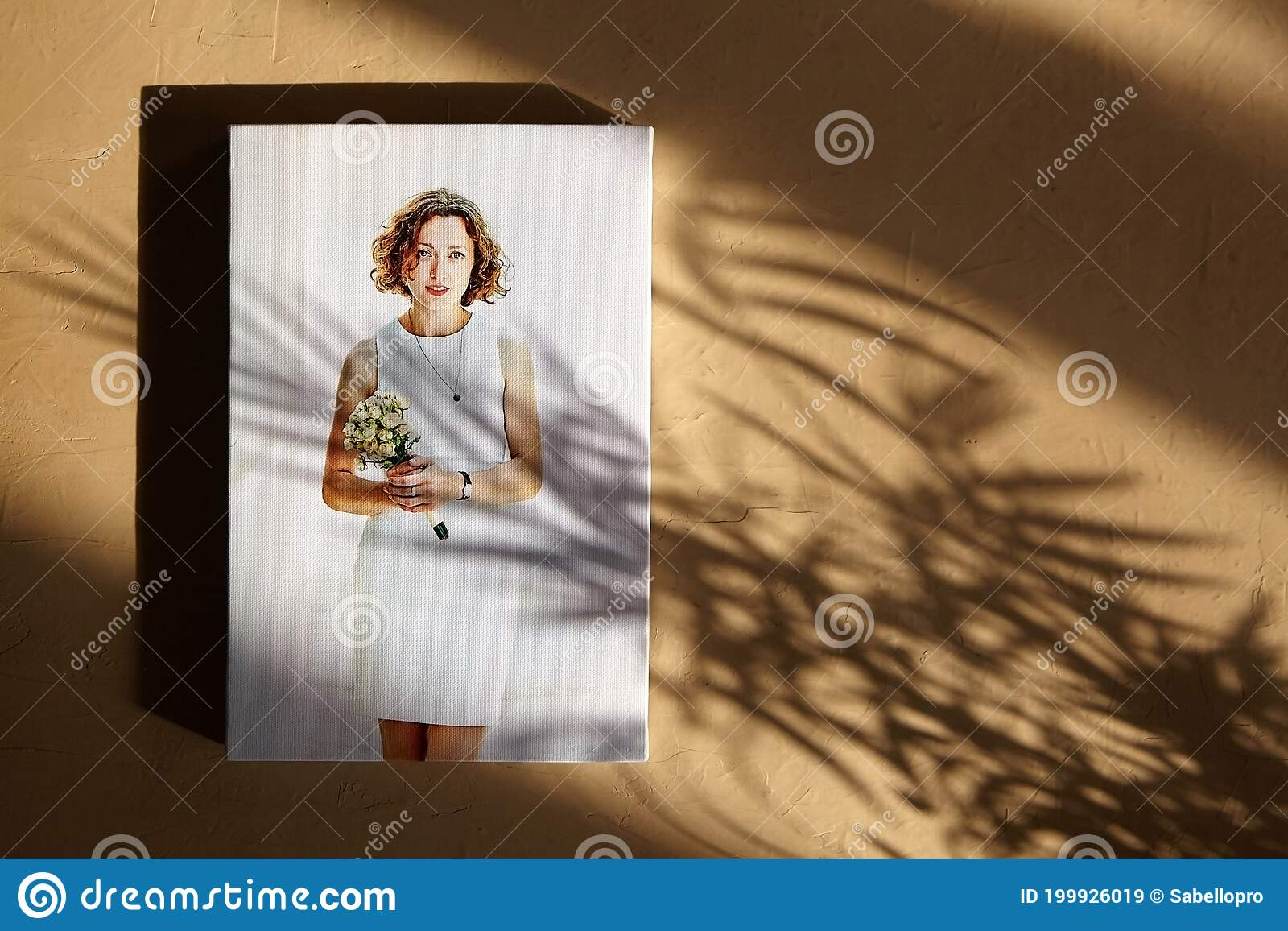 Canvas Print Photo On Wall With Sunlight And Shadow Of Leaves Stock Image Image Of Light Colorful 199926019