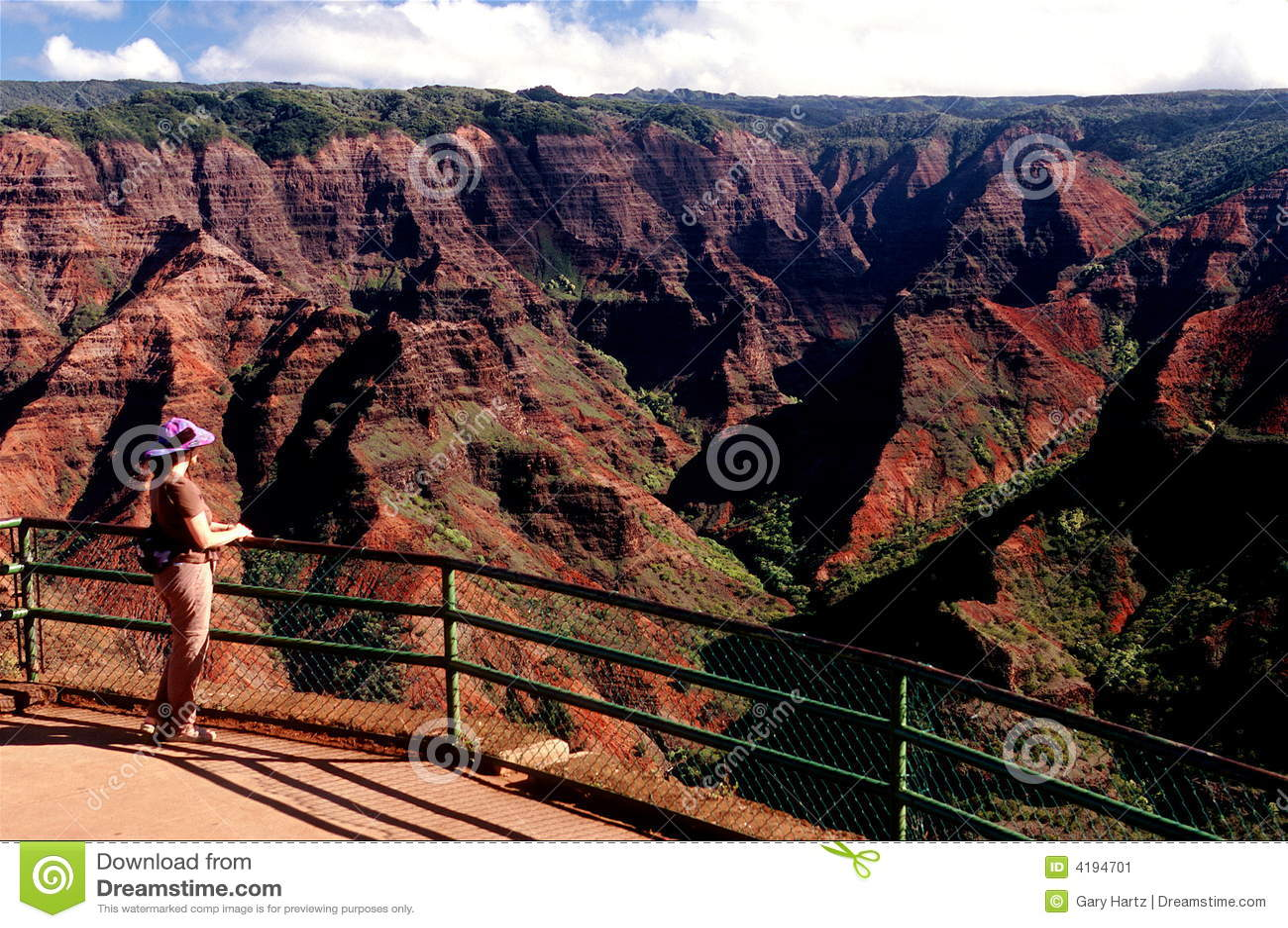 Canyon in Hawaii