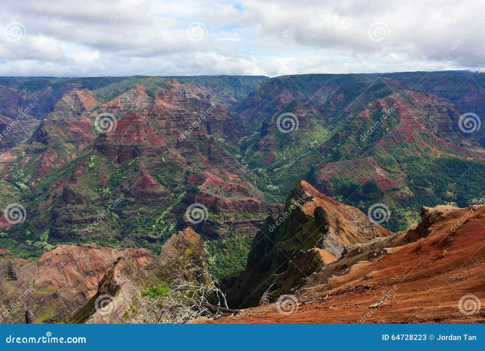 Canyon magnifico di Waimea