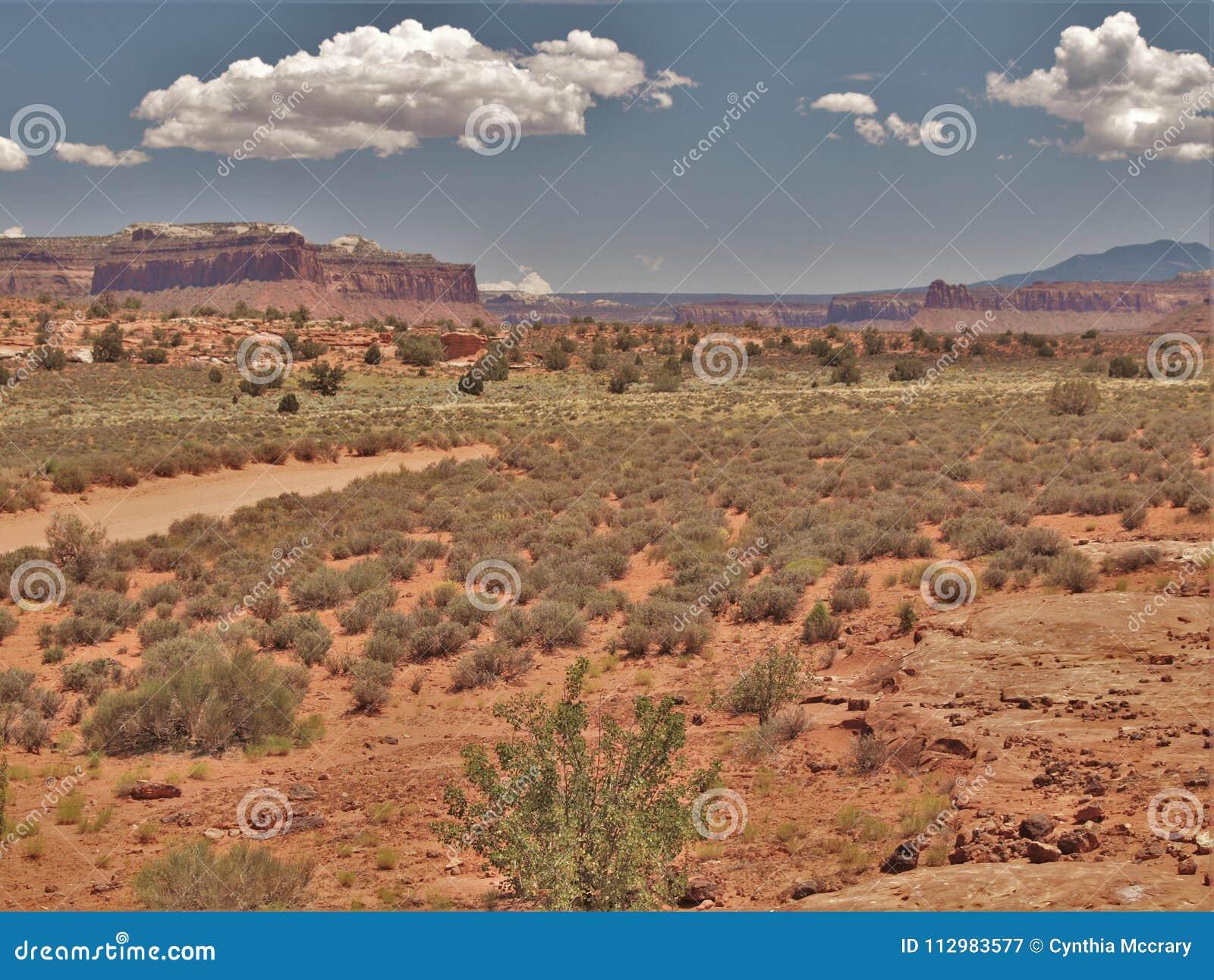 Canyon Rims Recreation Area in Utah