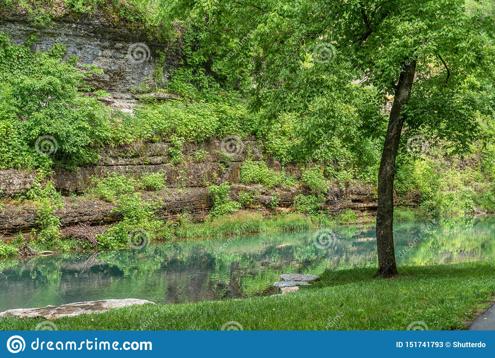 Canyon rock wall with reflections in green water