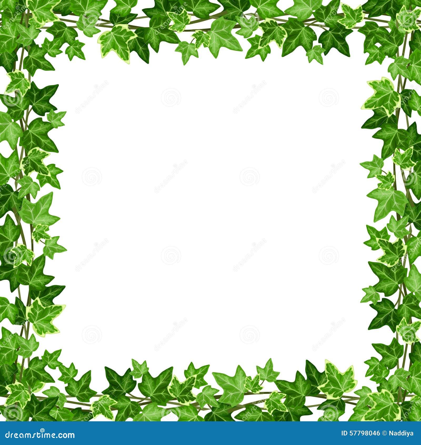 Cap tulo con las hojas verdes de la hiedra ilustraci n del - Marcos para plantas ...