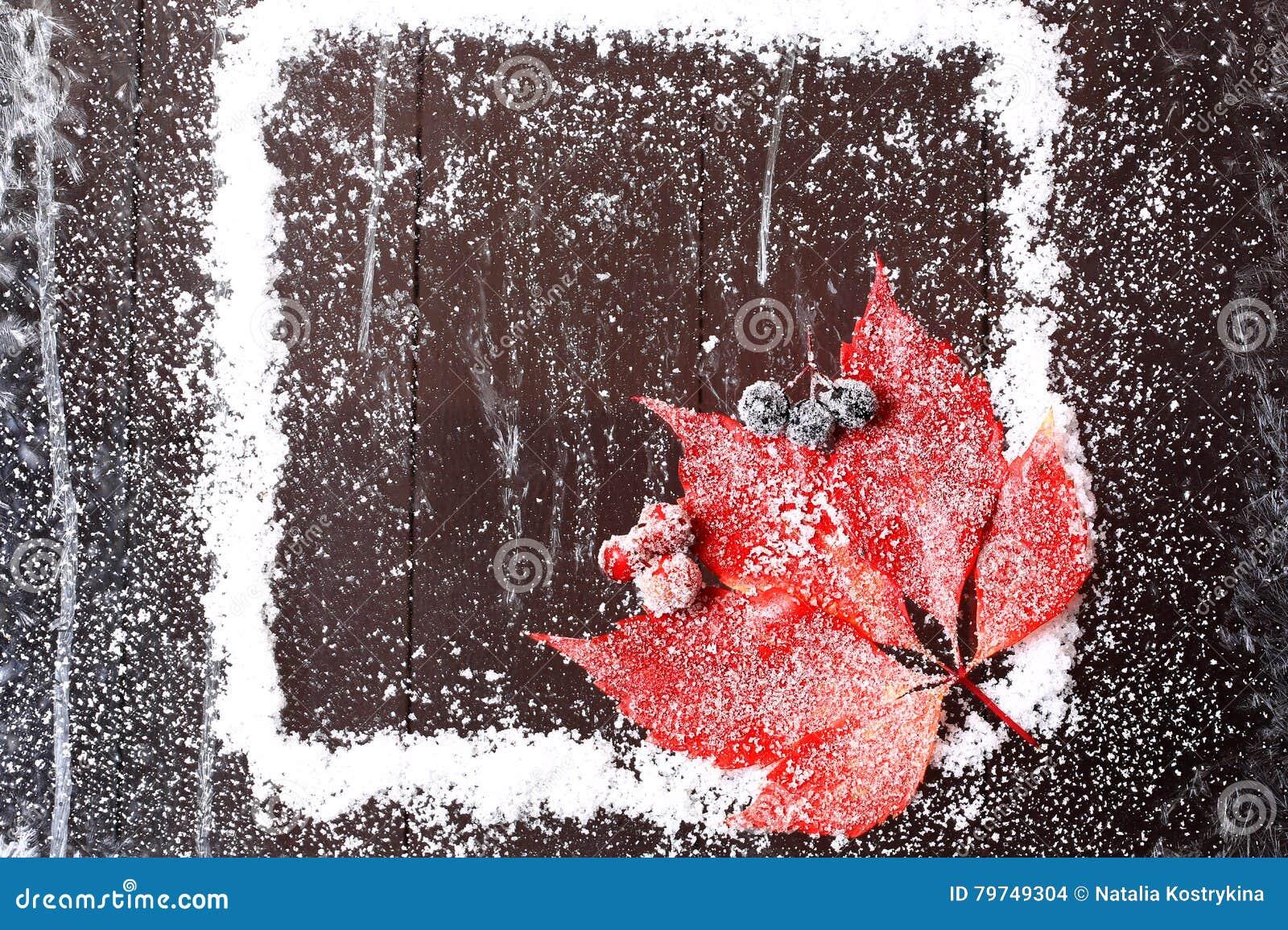 Capítulo de la nieve con una hoja roja