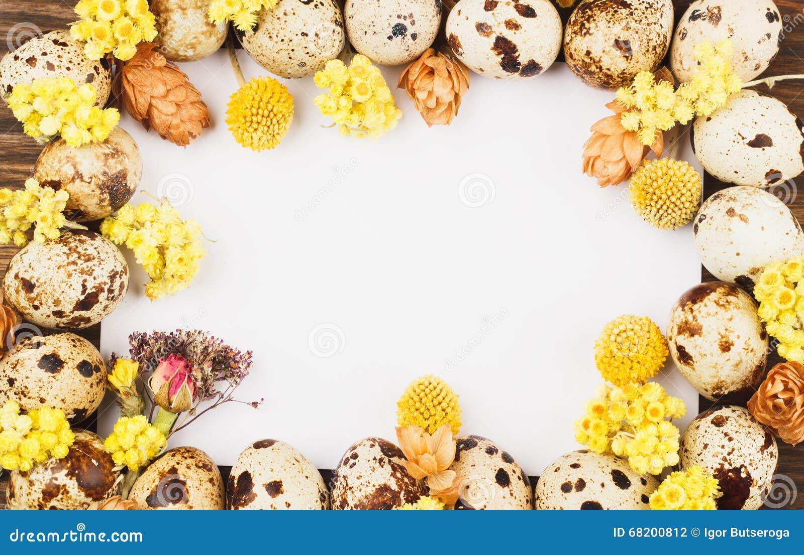 Capítulo de los huevos y de las decoraciones de codornices