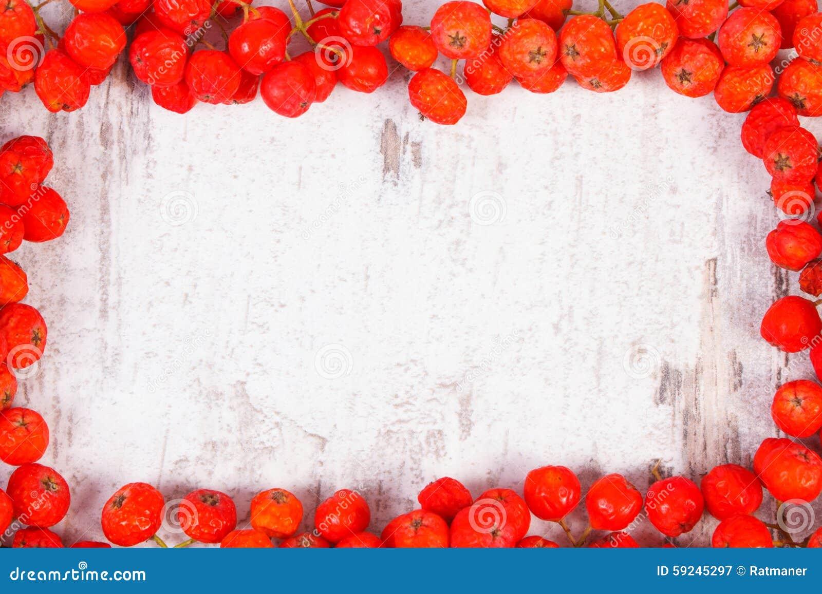 Download Capítulo Del Espacio Rojo Del Serbal Y De La Copia Para El Texto En Fondo De Madera Imagen de archivo - Imagen de envejecido, otoñal: 59245297