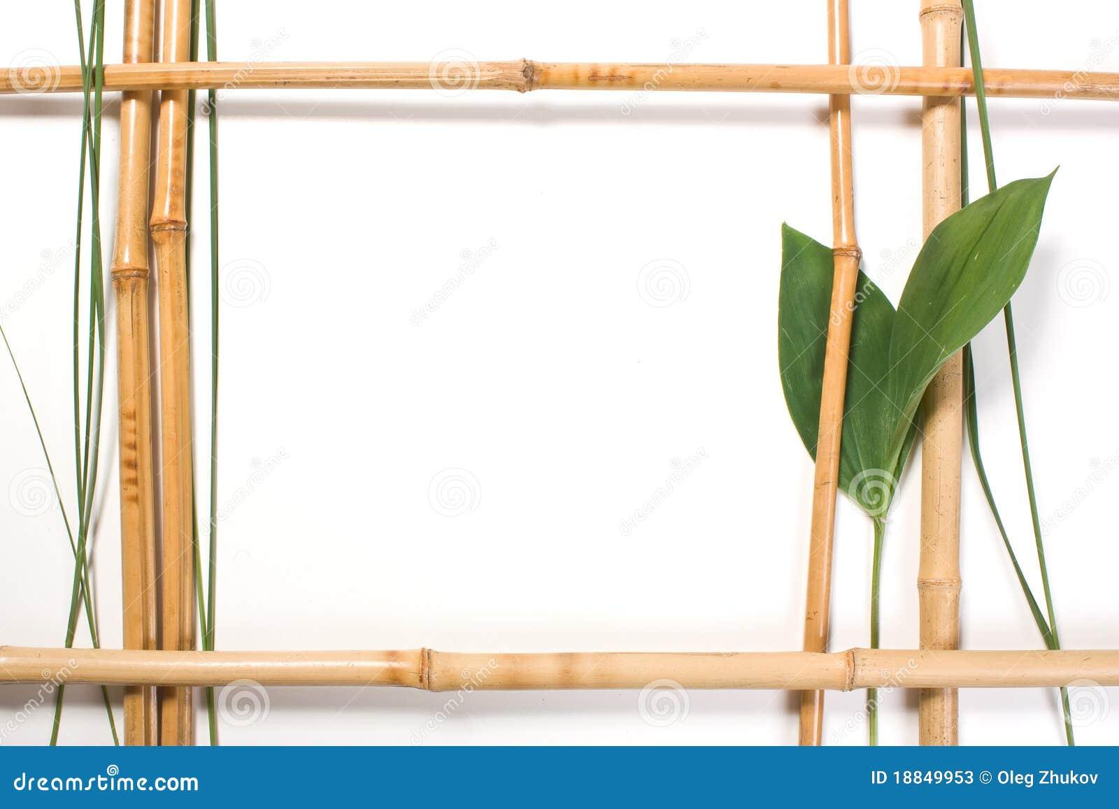 Cap tulo para los cuadros del bamb imagen de archivo - Marcos de cuadros para fotos ...