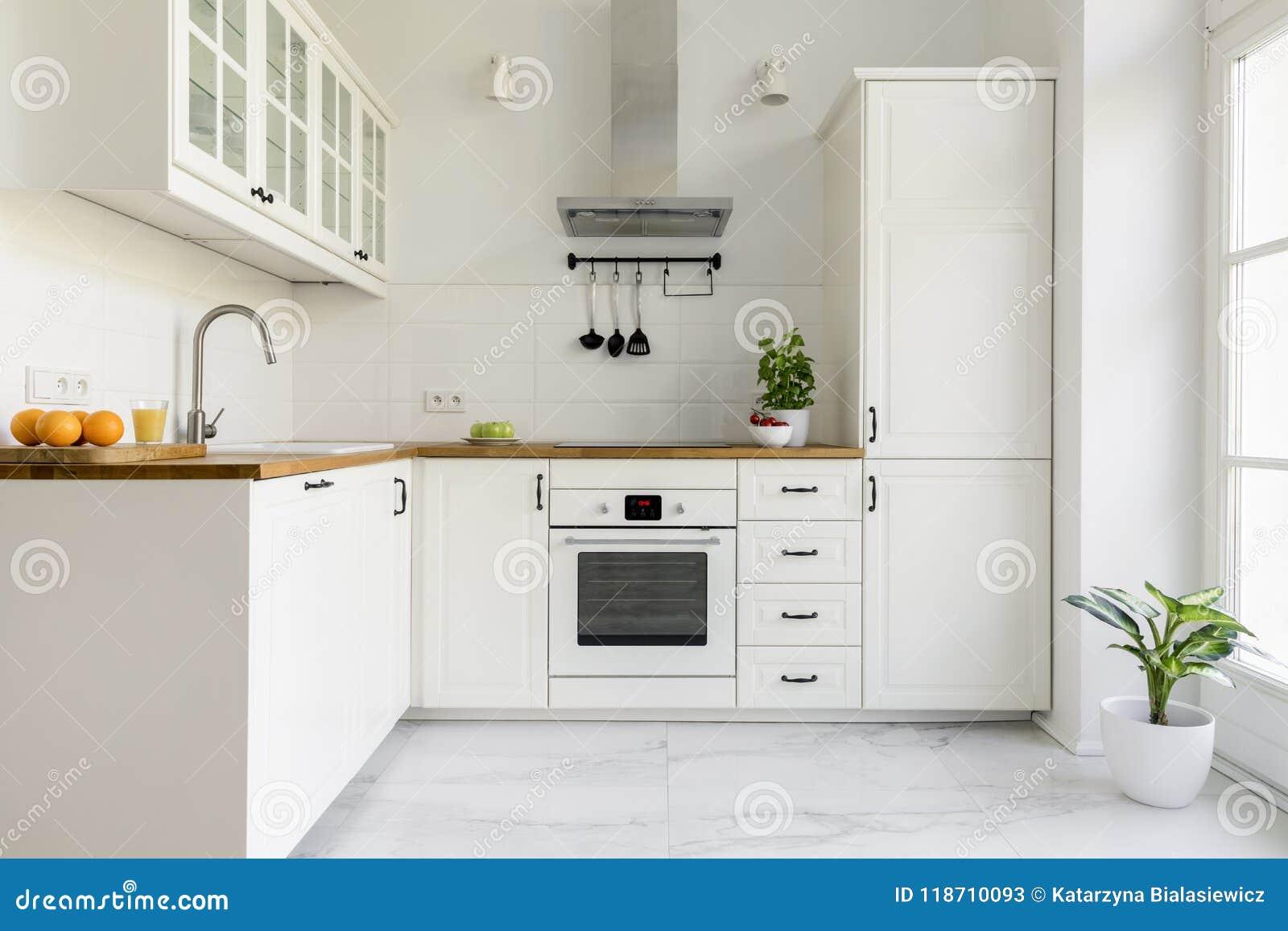 Capa de fogão de prata no interior branco mínimo da cozinha com planta