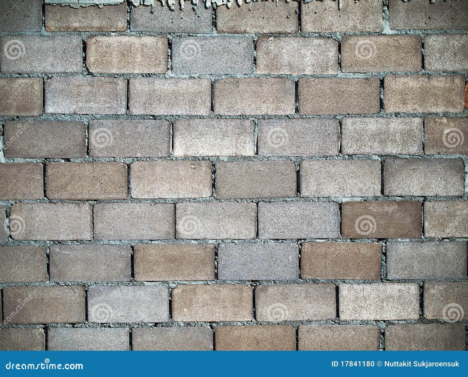 Capa del bloque de alineaci n de las paredes de ladrillo for Paredes de ladrillo para interiores