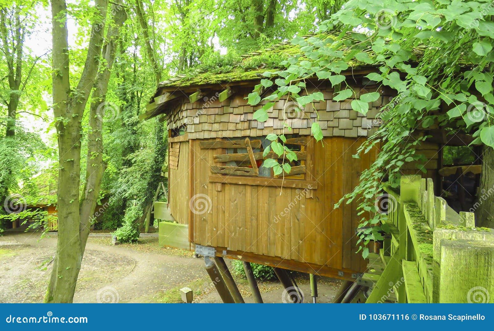 Capanna sugli 39 alberi di legno di alnwick alberi verdi giardino di alnwick nella contea - Prezzi alberi da giardino ...