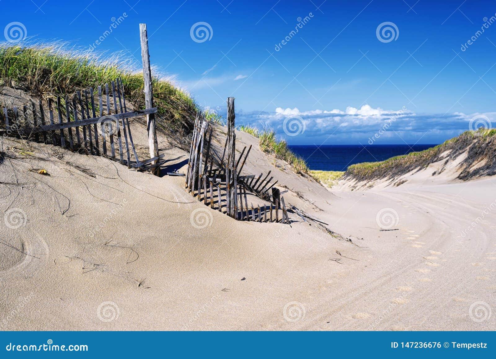 Cape Cod National Seashore Nature landscape