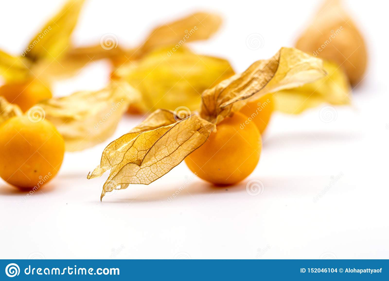 Cape Gooseberry Fruits Physalis Peruviana On White