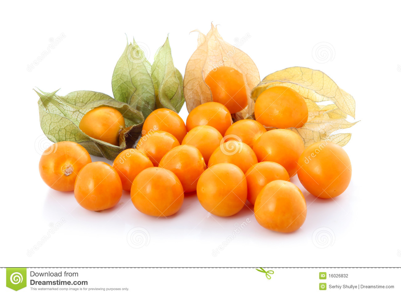 Cape Gooseberry (physalis) Isolated Stock Photography - Image ...