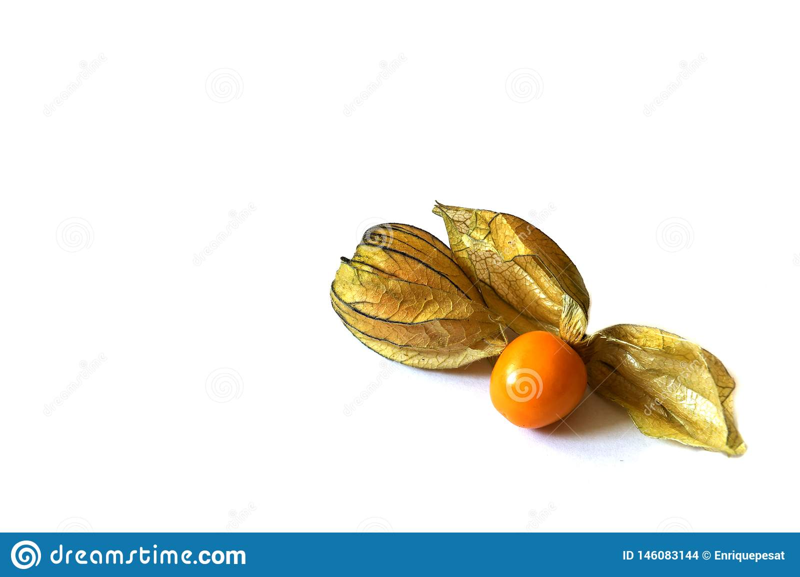 Big cape gooseberry   on white background