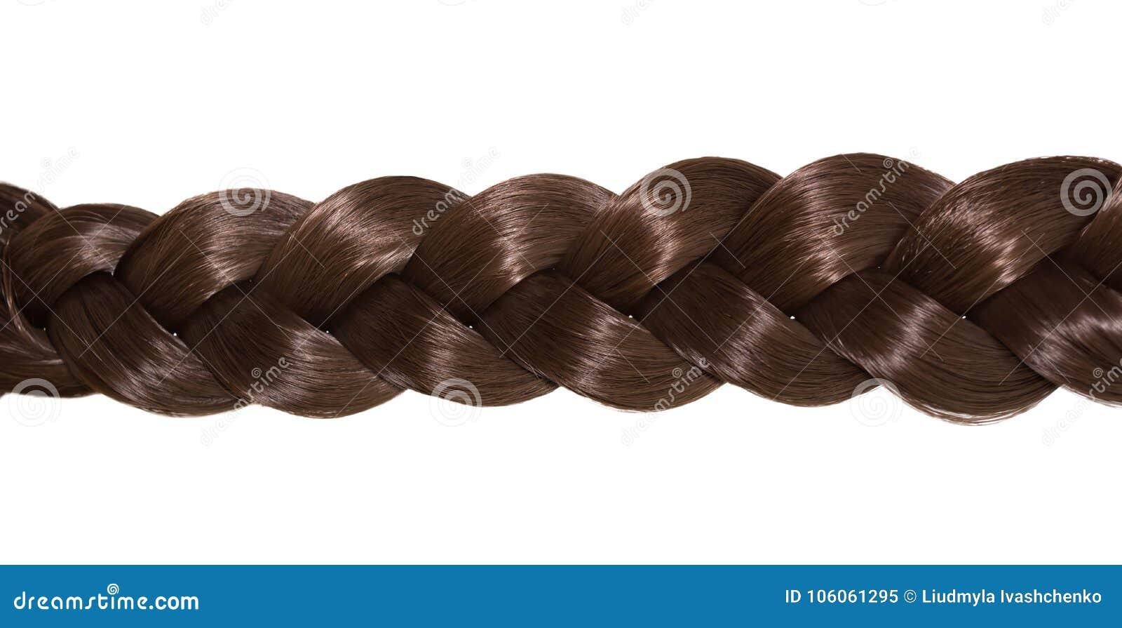 Capelli del ` s delle donne isolati su fondo bianco Una treccia marrone di capelli