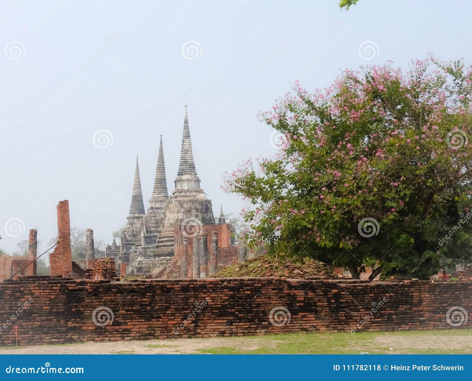Capital de Ayutthaya do reino de Sião