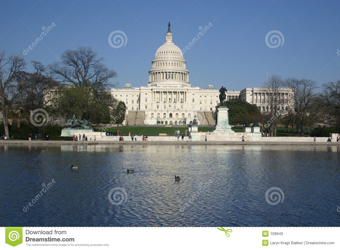 Download Capitol with reflection stock image. Image of duck, ripple - 109949
