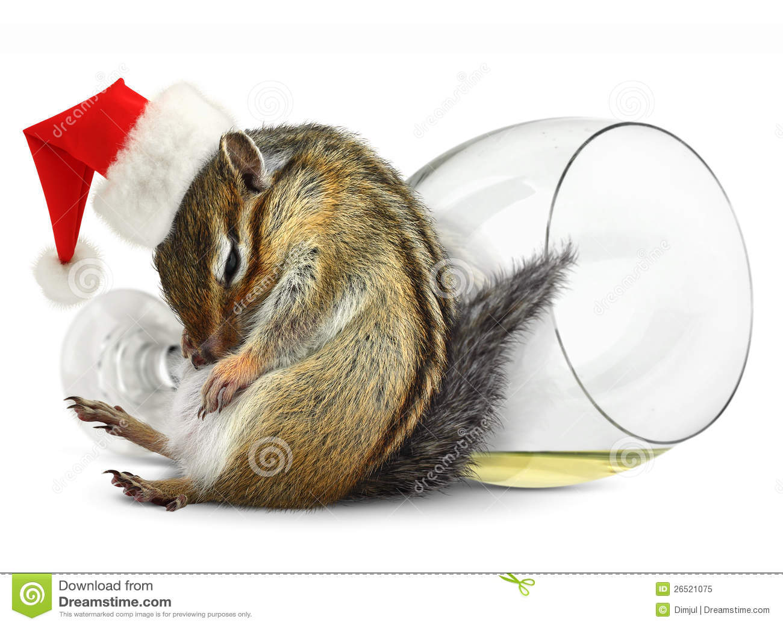 Cappello potabile divertente della Santa del vestito dal chipmunk