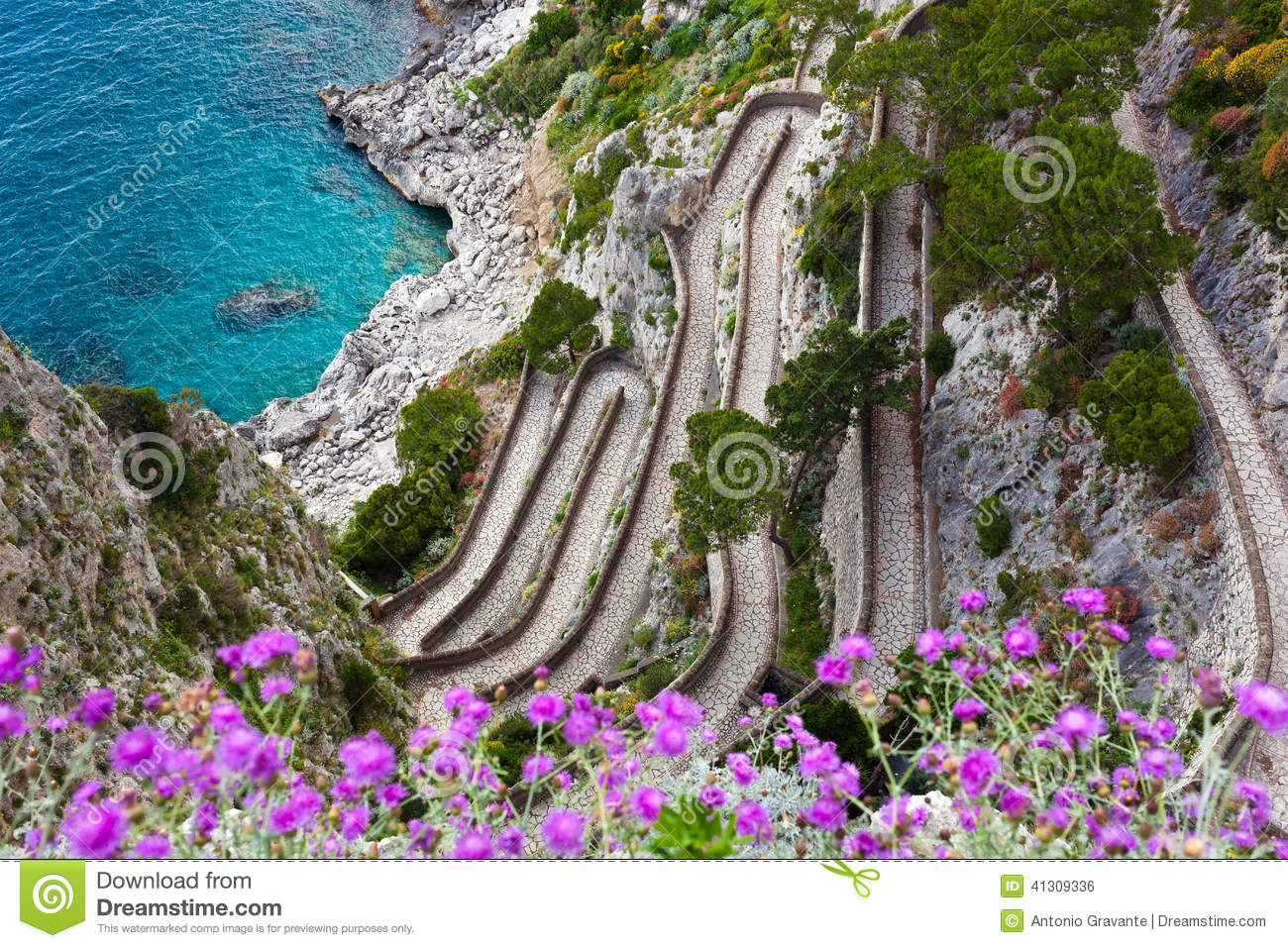 capri  via krupp  italy stock photo image of road sign vector image vector signboard free download