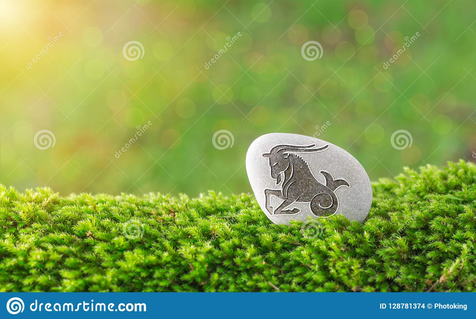 Capricorn zodiac symbol in stone