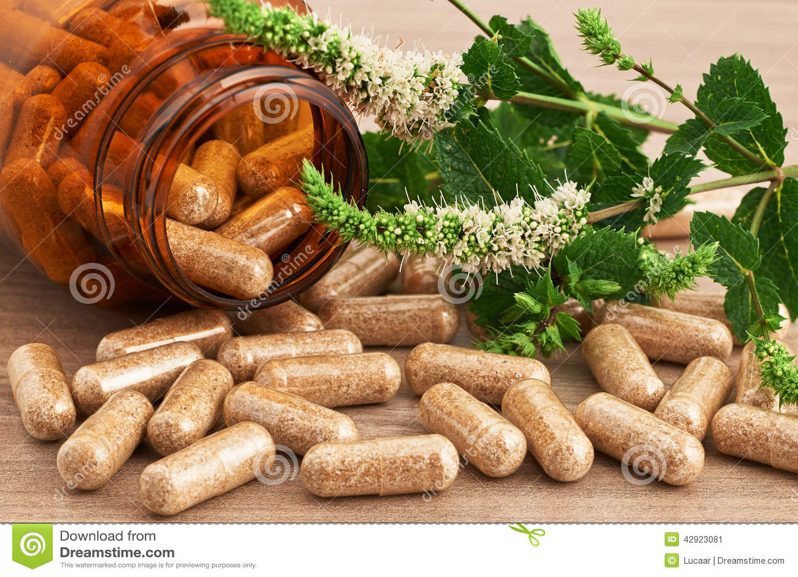Image source plantsam com - Capsules Green Herbal Medicinal Medicine Medicines Natural Plants Sources