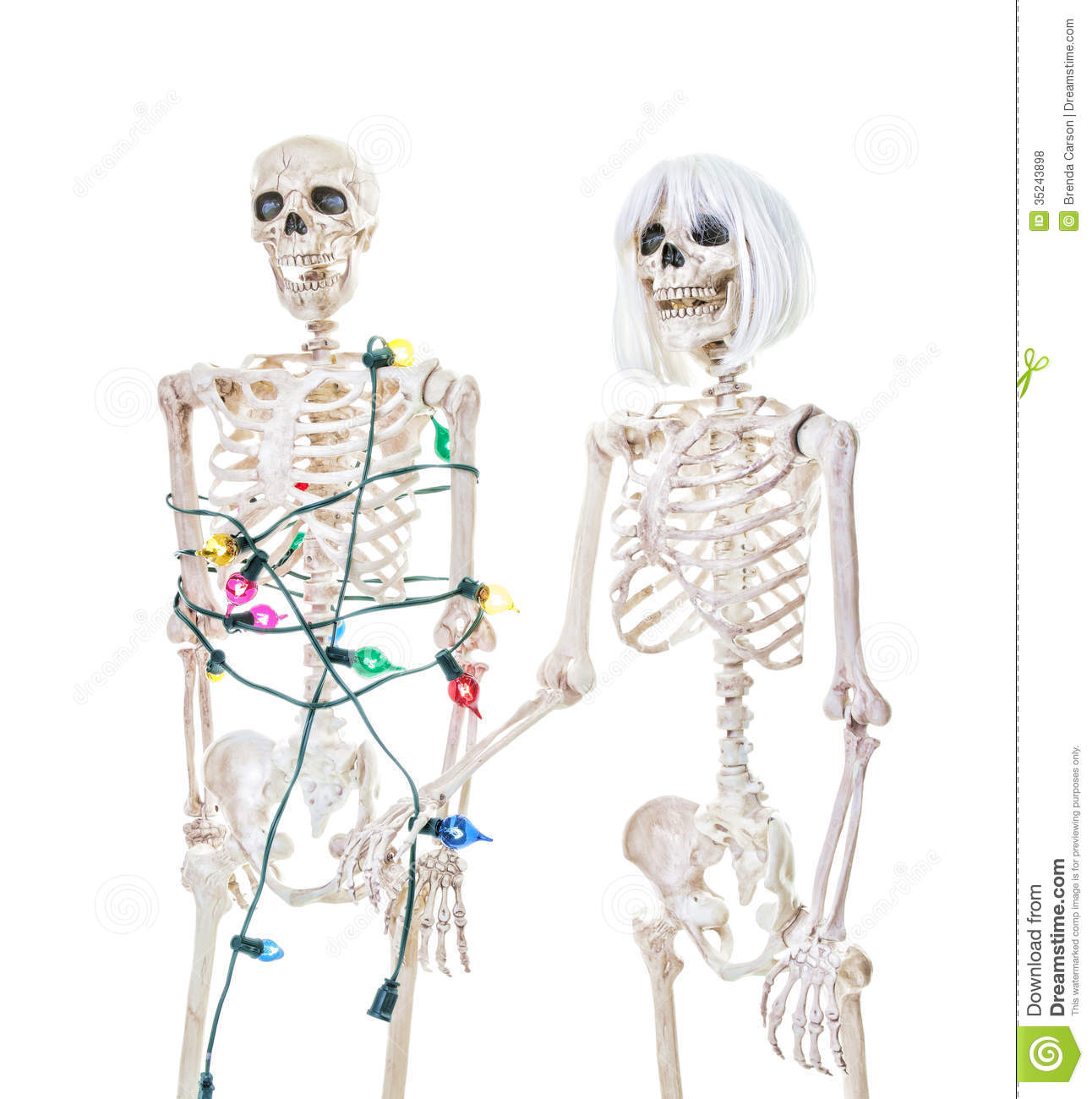 [Image: captive-christmas-skeleton-male-tied-up-...243898.jpg]
