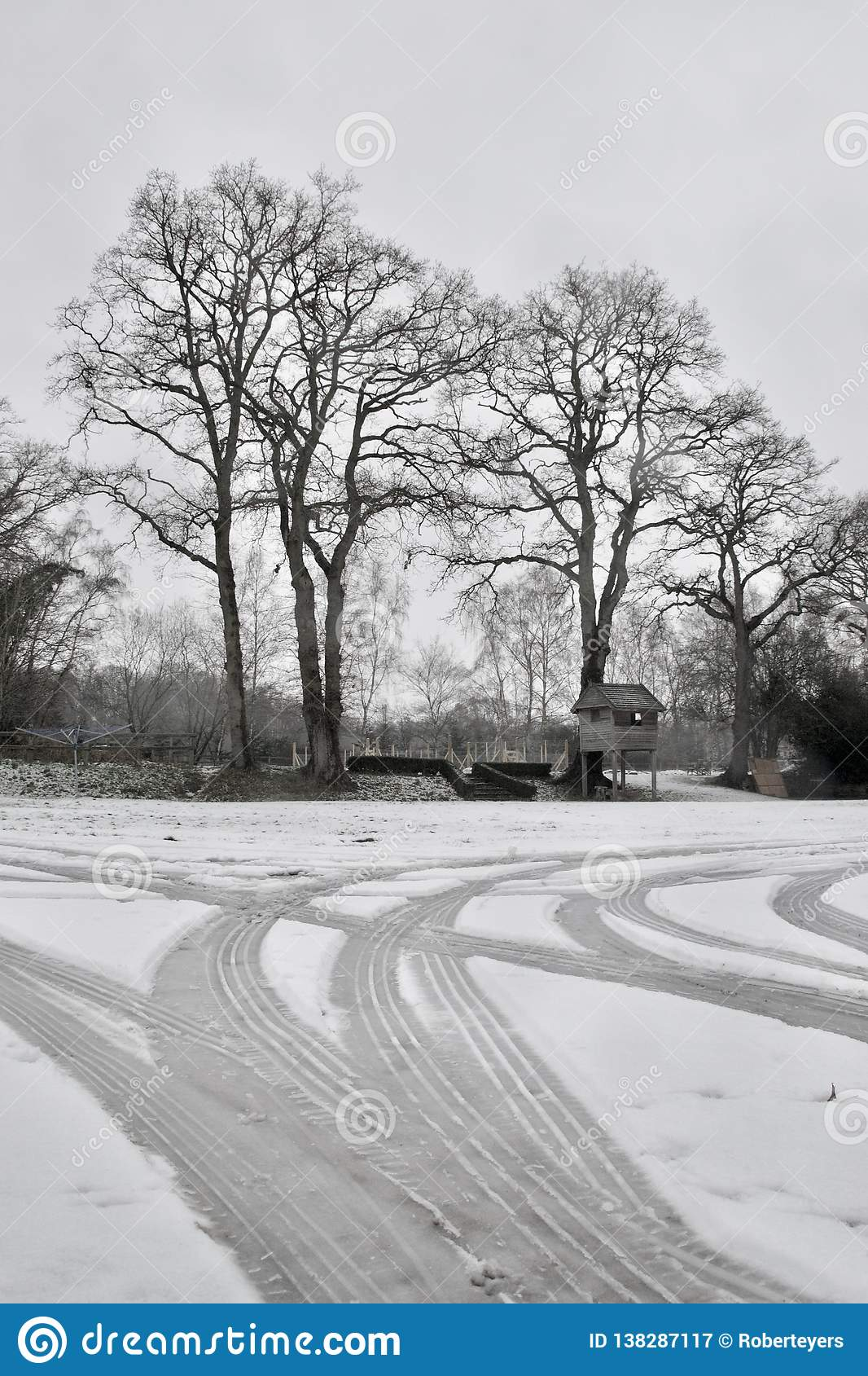 Car tyre tracks in snow on driveway; bare winter trees and garden tree house
