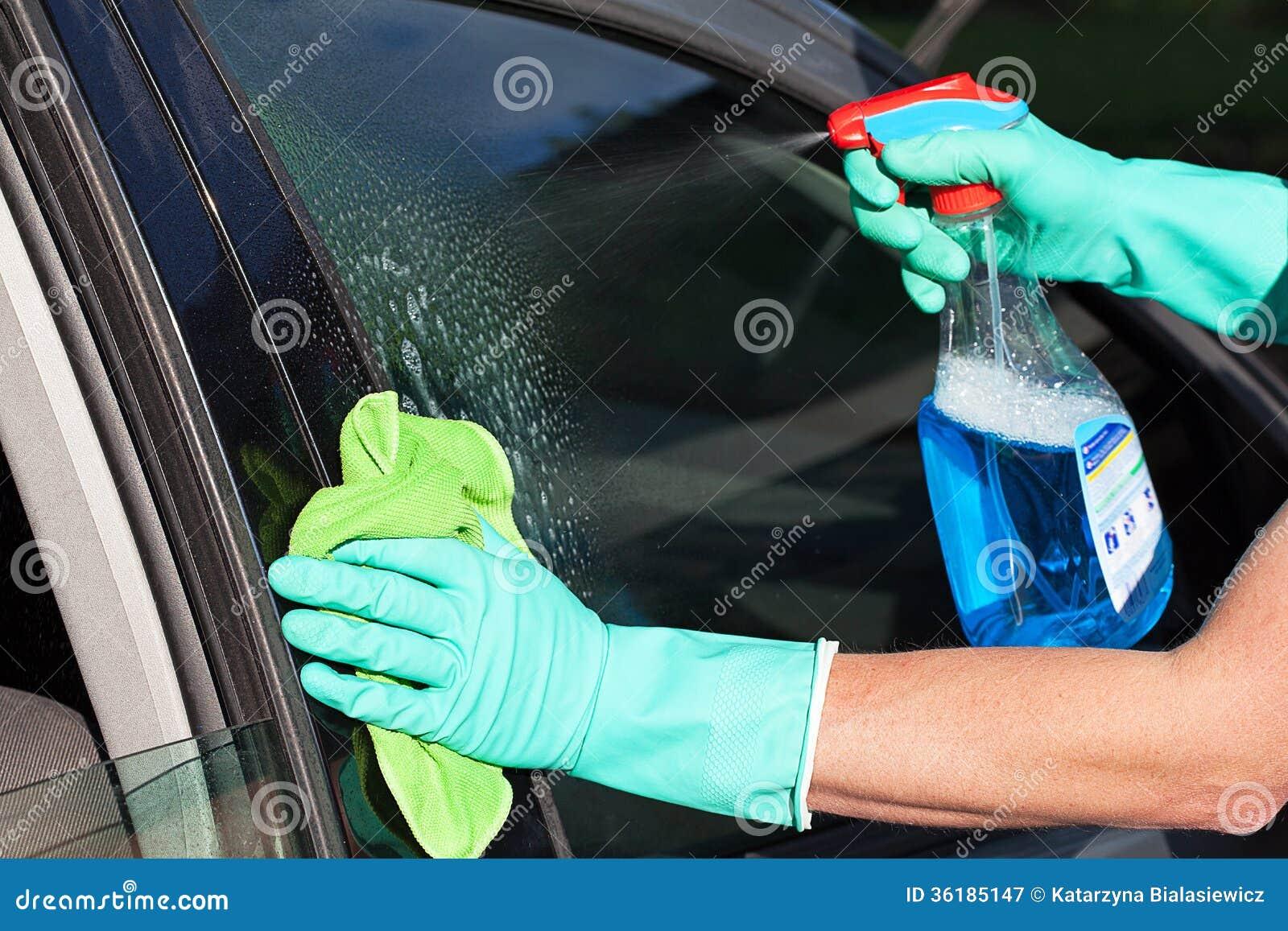 Car Wash Hand Gloves
