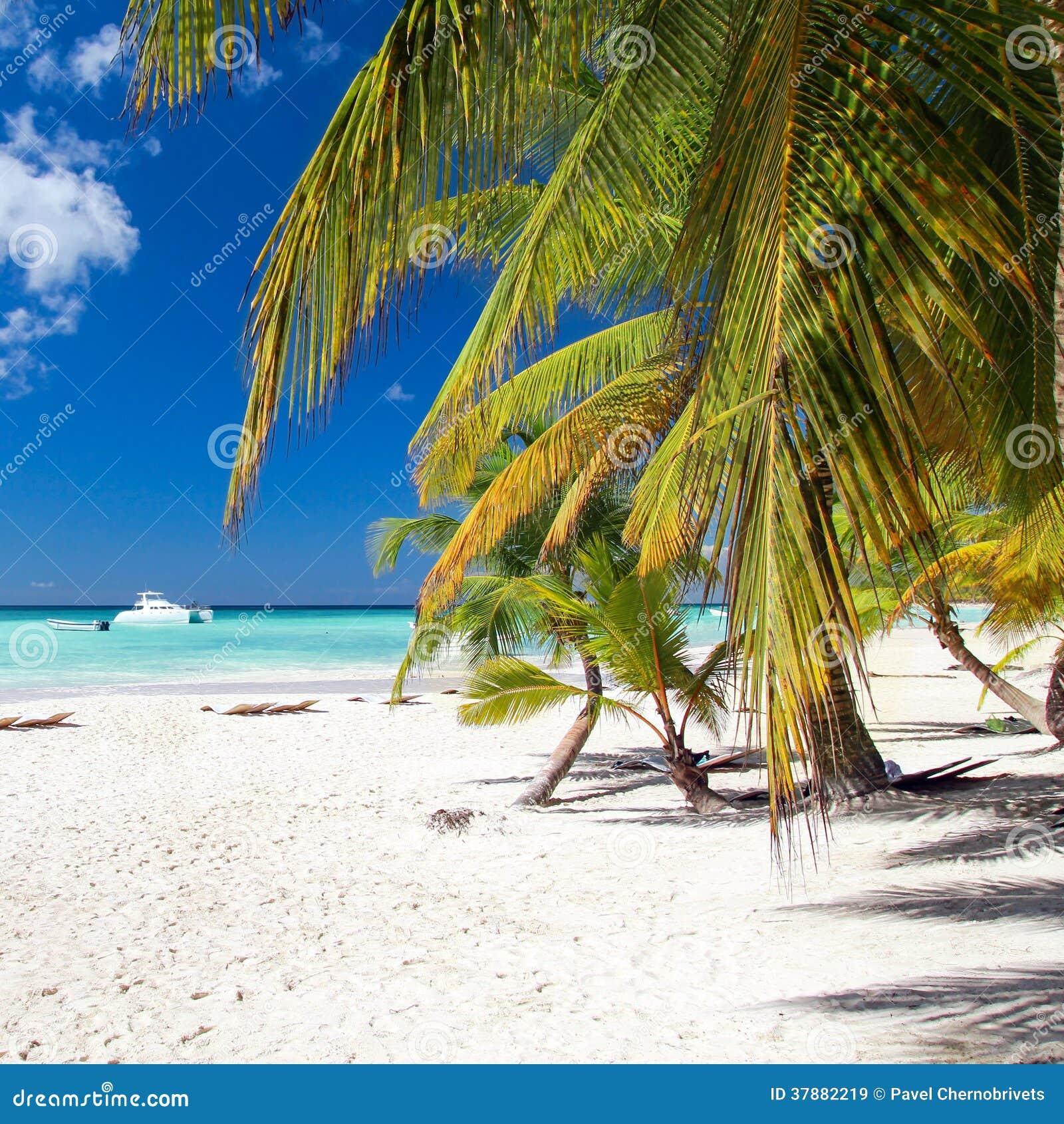 Caraïbisch paradijs