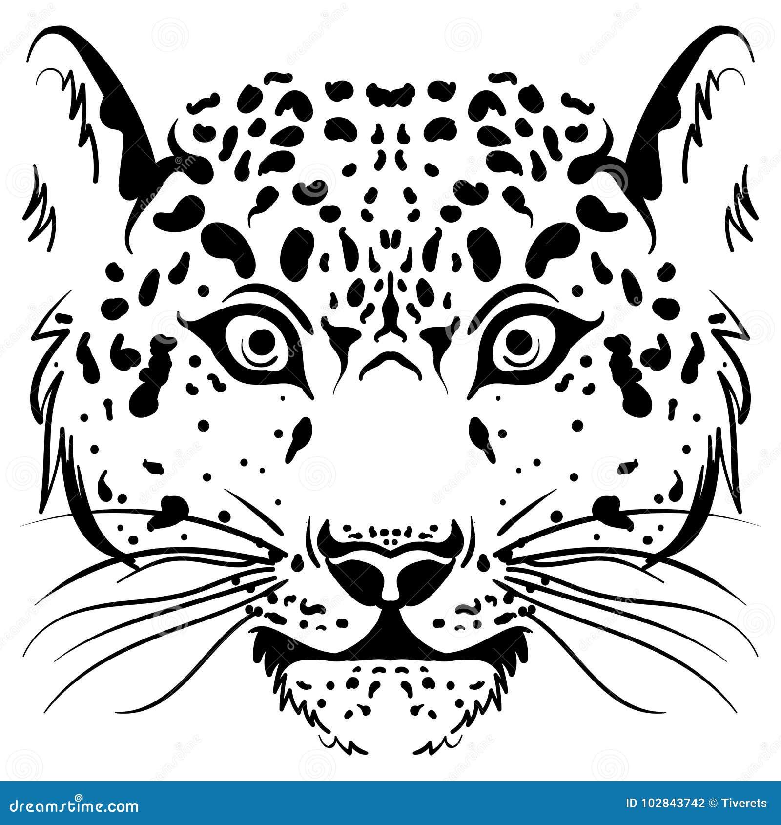 Cara Blanco Y Negro Del Leopardo Del Bosquejo Del Vector Ilustración ...