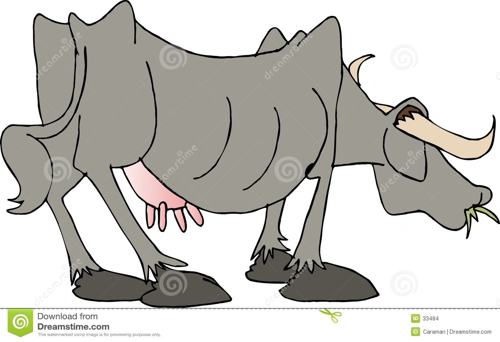 Cara de la carne de vaca II