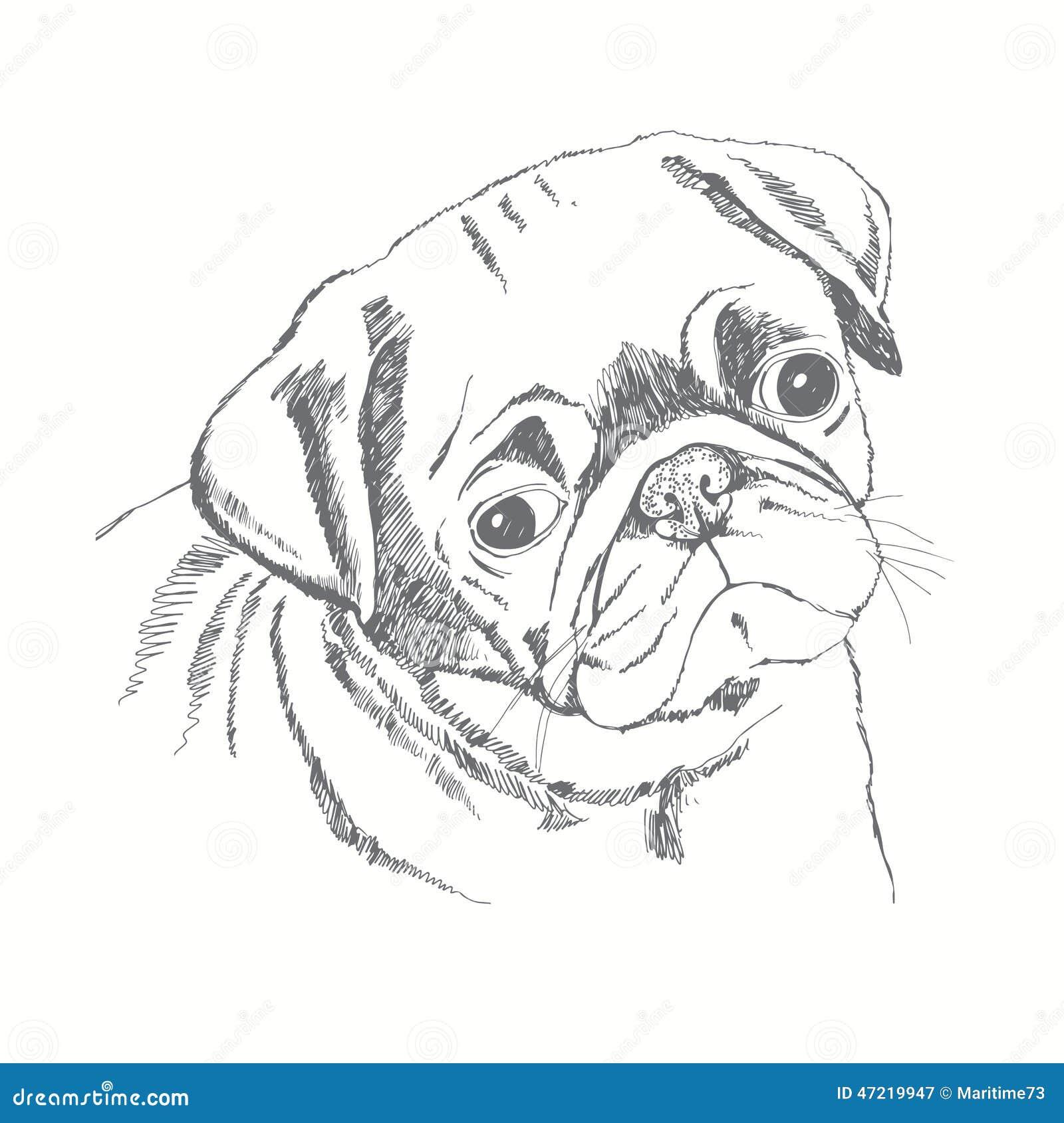 Cara Do C 227 O Do Pug Face Das Mulheres Hand Drawn De