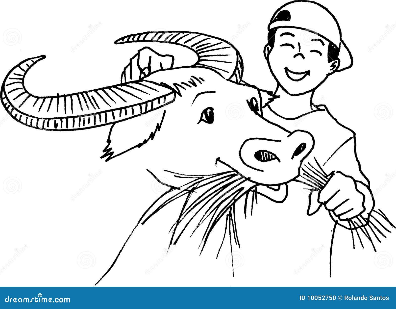 Carabao Feeding Stock Photo Image 10052750