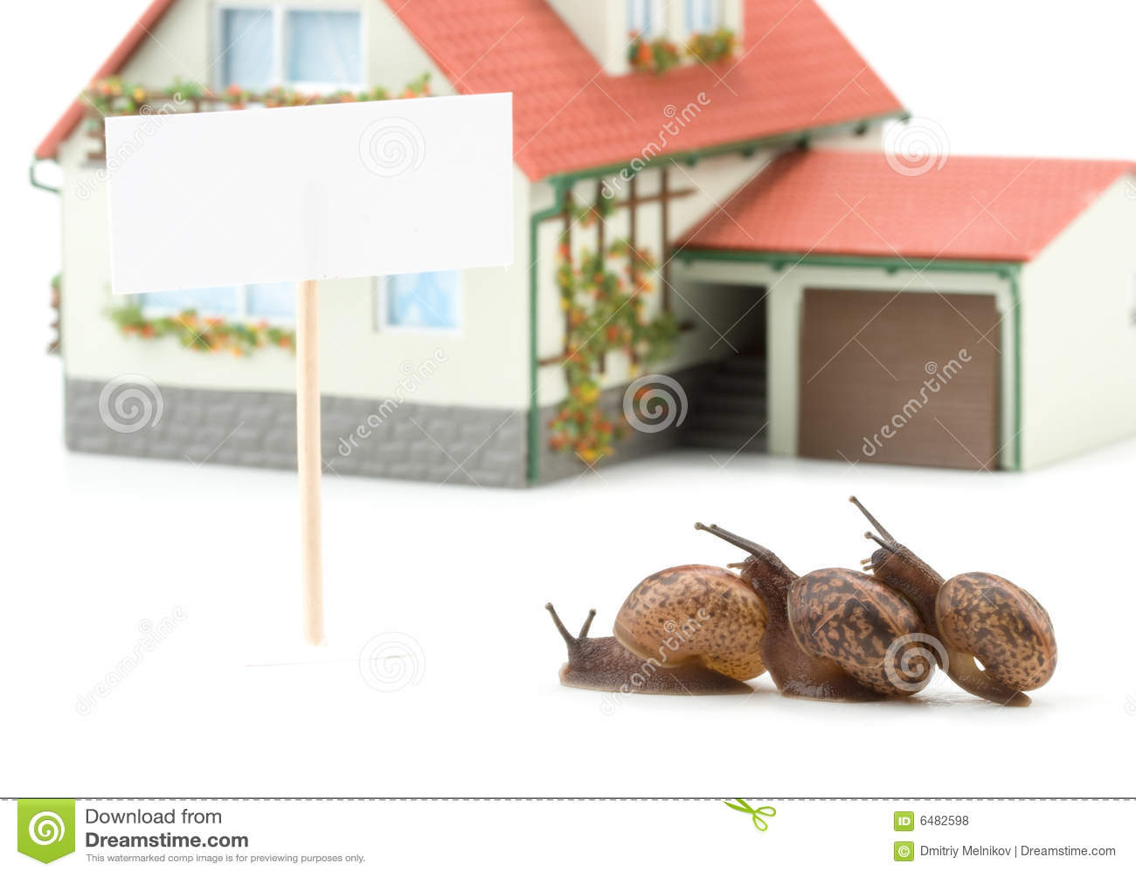 Caracol de jard n y casa miniatura fotos de archivo libres for Caracol de jardin