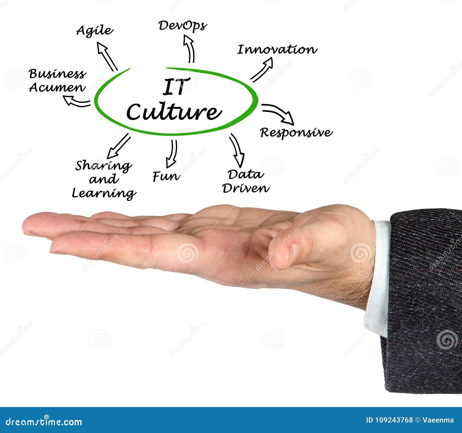 Características da cultura da TI
