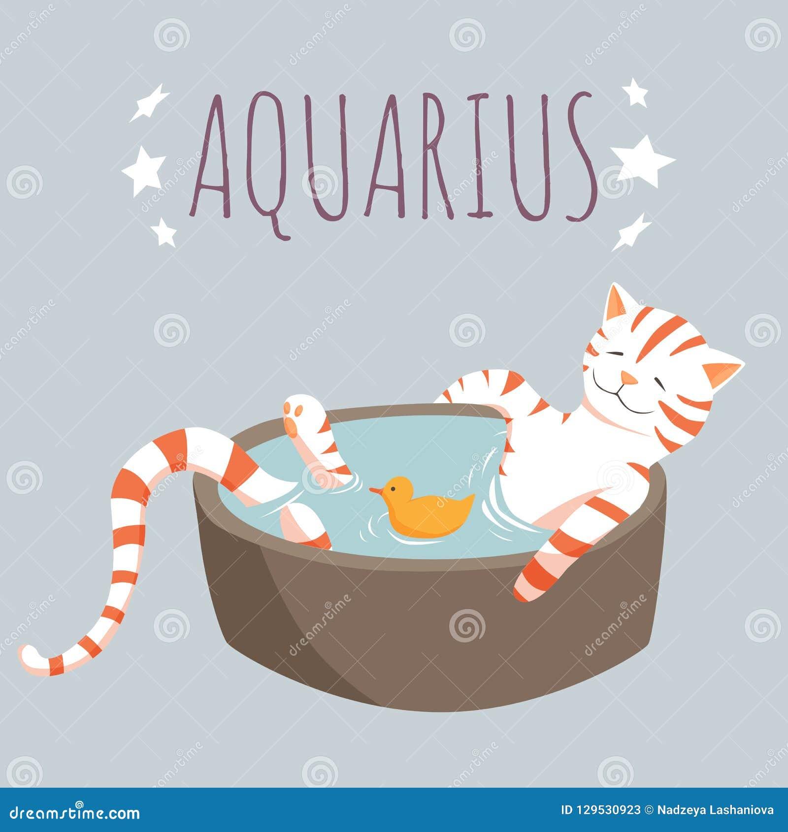 Carattere dello zodiaco di acquario; personaggio dei cartoni animati del gatto stilizzato come zod