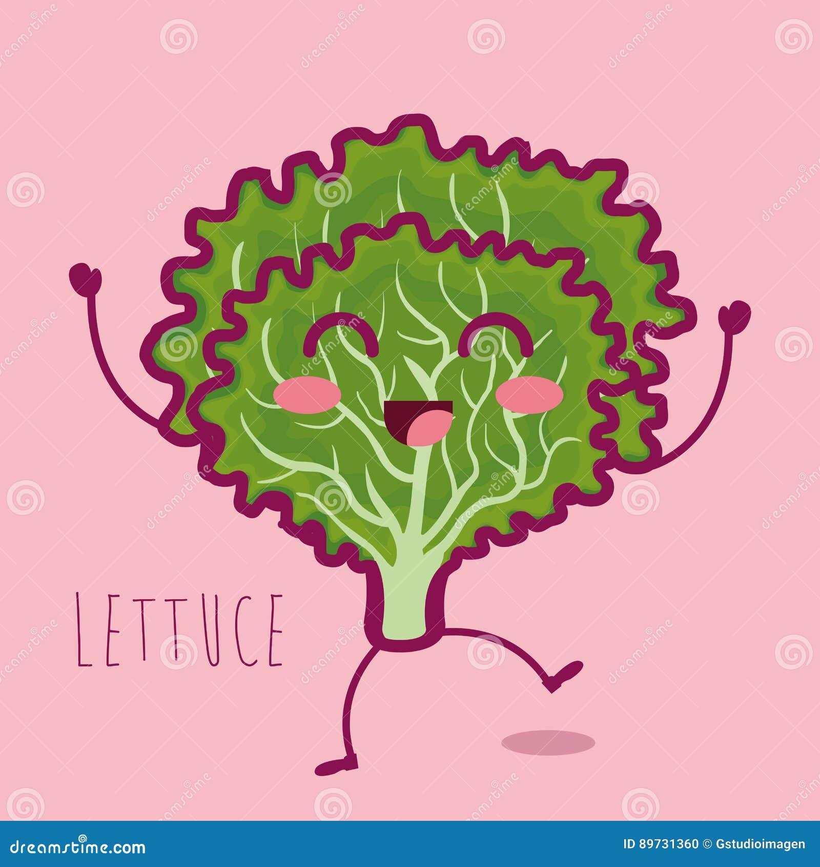 Carattere fresco della verdura della lattuga
