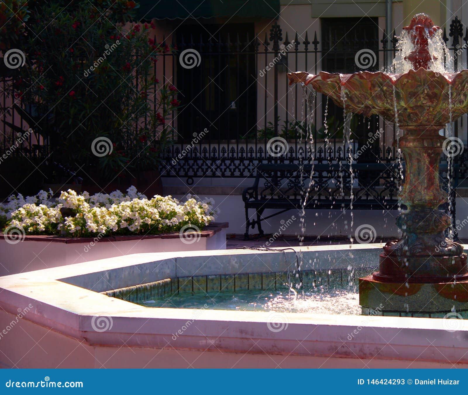Caratteristica dell acqua del cortile