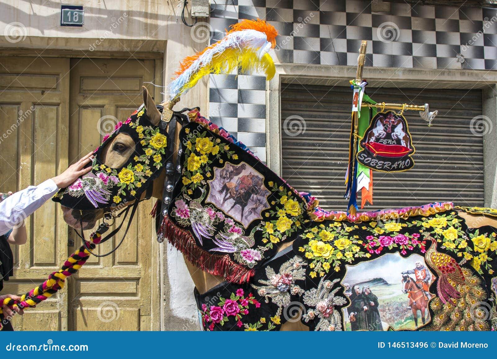 Caravaca de la Cruz, Spanien, am 2. Mai 2019: Pferd, das bei Caballos Del Vino vorgef?hrt wird