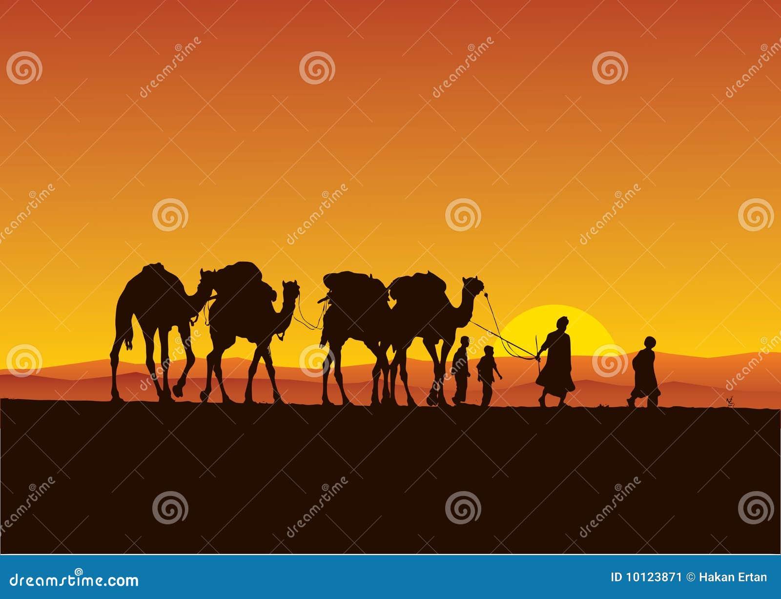 Caravana de los camellos del desierto